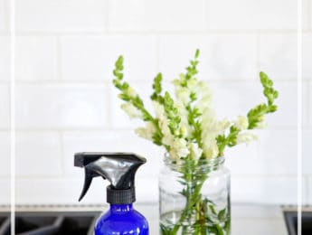 DIY Glass and Stainless Steel Cleaner - make this easy all-natural cleaner for glass and stainless steel surfaces - DontMesswithMama.com