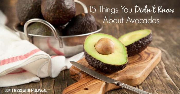 15 Things You Didn't Know About Avocados | Health Benefits of Avocados - DontMesswithMama.com