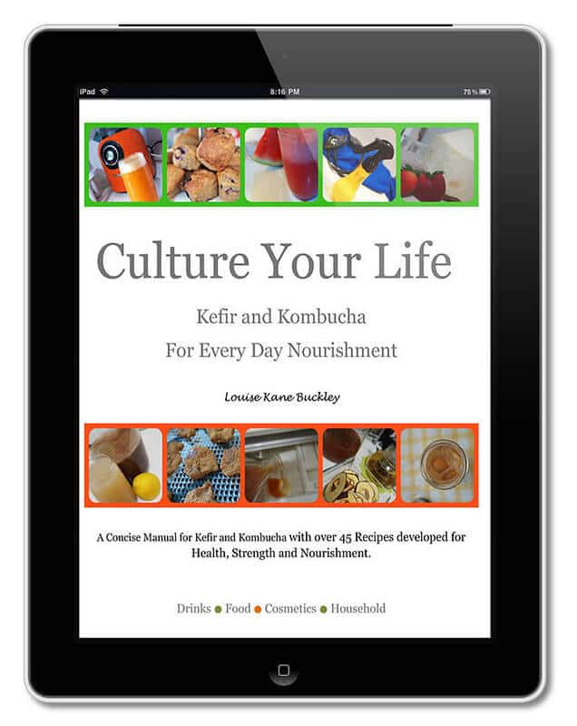Culture Your Life e-book - recipes for kombucha and kefir - DontMesswithMama.com