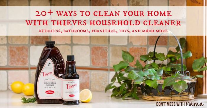 20 Ways to Clean Your Home with Thieves Household Cleaner - DontMesswithMama.com