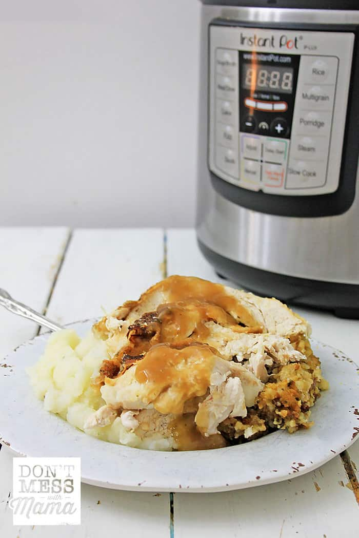 Closeup of turkey and mashed potatoes on a plate next to an Instant Pot