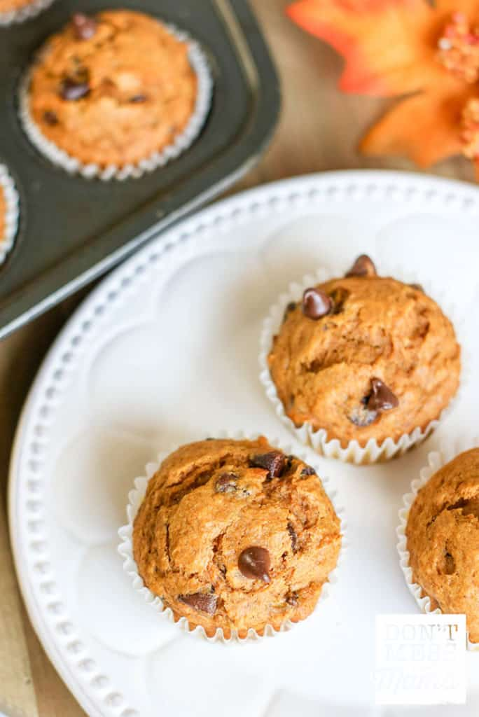 Gluten-Free Pumpkin Chocolate Chip Muffins - Don't Mess with Mama